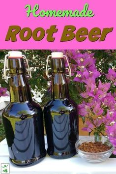 Have you ever thought of making homemade root beer? This root beer drink from The Healthy Home Economist is both delicious and good for you. It really is easier than you think to make this probiotic beverage. Come try homemade root beer--you and your family won't be disappointed! Sassafras Root, Root Beer Bottle, Beer Recipes, Drink Recipes, Brewing Recipes, Brew Your Own, Slushies, Fermented Foods, Kombucha