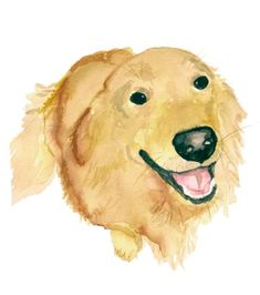 Golden Retriever Print by wrensroost on Etsy, $25.00