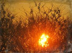 Sunrise,with Daguerreotype frame.  Photo property of,TJS-Photography.