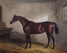 William Barraud (British, 1810-1850) Portrait of the Hunter Skylark