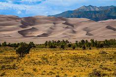 Los campos de dunas de #Great #Sand #Dunes National Park conforman un paisaje de belleza solemne, fruto de un frágil y complejo sistema en el que participan los cauces del agua y los constantes vientos que azotan este atípico desierto alto de #Colorado. Un lugar donde es posible contemplar sus verdes prados en contraste con los suaves tonos de sus arenales y barjanes, así como las grandes dunas cubiertas de nieve en los tramos finales del invierno y los inicios de la primavera.