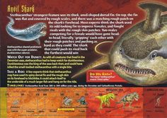 Name: Stethacanthus Category: Monsters of the Past Card Number: 111 back Stethacanthus Monsters of the Past Card 111 front front Stethacanthus Monsters of the Past Card 111 back Trading Card: Mysteries Of The World, Interesting Animals, Underwater Creatures, Wild Creatures, Animal Species, Wtf Fun Facts, Animal Cards, Prehistory, Shark