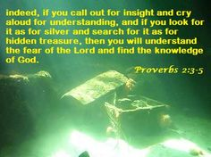 Daily Bible Verse: indeed, if you call out for insight and cry aloud for understanding, and if you look for it as for silver and search for it as for hidden treasure, then you will understand the fear of the Lord and find the knowledge of God. Proverbs 2:3-5