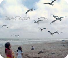 27 Beach Photo Ideas