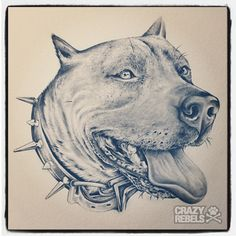 Don't bully my breed. #endBSL #pitbull #illustration #handdrawn