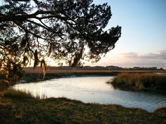 Georgia Coast / Sapelo Island - Heaven on Earth...my daddy lives here most of the time.  I love, love, love to just sit and look out at the water, the marsh - watch the colors change with the seasons.  It's amazing.  Love!