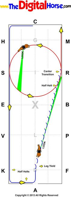 Canter Transistion
