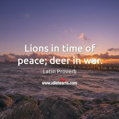 Lions in time of peace; deer in war. Interesting Quotes, True Words, Famous Quotes, Wisdom Quotes, Proverbs, Lions, Sentences, Insight, Deer
