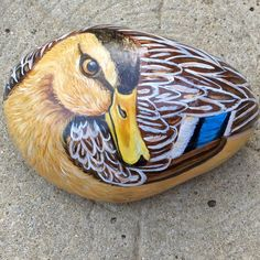 Duck,beautifully painted on stone..