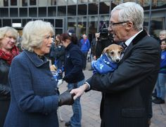 As patron of Battersea Dogs and Cats,  Camilla paid a visit to the shelter with her own two rescued Jack Russell terriers Beth and Bluebell. Here she meets television personality Paul O'Grady. 12 Dec 2012  (Source: WPA Pool/Getty Images Europe)