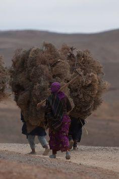 """""""Dos de femme, dos de mulet"""" de Hicham Houdaïfa: Une plongée dans le Maroc des femmes oubliées (INTERVIEW)"""