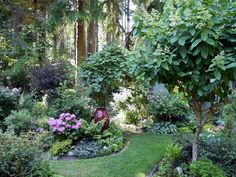 A Lively & Colorful Shade Garden in the Pacific Northwest | Fine Gardening