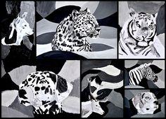 Animali in bianco e nero