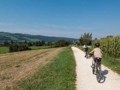 Rund um den Baldeggersee: Schöner Radweg über dem Baldeggersee