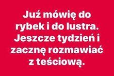 Stupid Funny Memes, Wtf Funny, Polish Memes, Life Humor, Haha, Jokes, Poland, Ha Ha, Ignition Coil