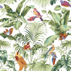 stereo tropical garden flower bird painting style wallpaper bedroom TV background personality wallpaper mural Home Decor Wallpaper Modern Wallpaper, Photo Wallpaper, Of Wallpaper, Widescreen Wallpaper, Wallpaper Pictures, Wallpaper Jungle, Tropical Bathroom, Tropical Decor, Tropical Garden