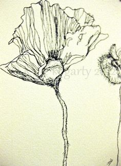 Tiny Black and White Poppy and Pod Drawing, Flower, Art, ACEO, Fine Art Print, Australia, Wedding, Thankyou Gift