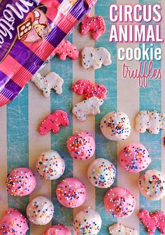 Circus Animal Cookie Truffles Recipe These adorable Circus Animal Cookie Truffles only have 4 ingredients and are perfect for Mother's Day, Baby Showers, Spring Celebrations, and more! Christmas Treats, Christmas Baking, Christmas Truffles, Christmas Candy, Christmas Cookies, Candy Recipes, Sweet Recipes, Cheap Recipes, Dessert Recipes