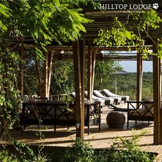 Subscribe to our newsletter or simply get in touch should you have any queries. We would love to hear from you! See link in Bio Lodges, Safari, Pergola, Outdoor Structures, Touch, Link, Instagram, Cabins, Outdoor Pergola