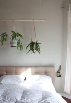 - How to Plant an Indoor Hanging Herb Garden Use the Miracle-Gro Indoor Plant Food to give your house plants the extra boost they need to grow. It's perfect for creating this hanging plant piece for your room. Photo courtesy of Paul Samples Home Bedroom, Bedroom Decor, Bedrooms, Bedroom Plants Decor, Bedroom Ideas, Bedroom Ceiling, Decor Room, Bedroom Colors, Window Plants