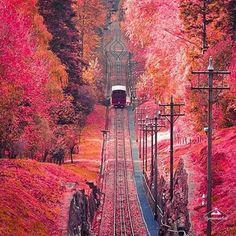 #travelbug #traveldiaries #igtravel #travelawesome #travelblog #travelphotography #welltravelled #traveldeeper #travel