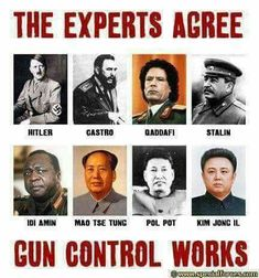 Look at these experts on gun control