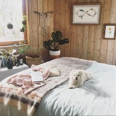 my scandinavian home: The bedroom in artist Brigitte May's bohemian-style cabin by the sea (cute pup!).