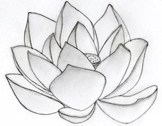 Lotus Tattoos, Designs And Ideas : Page 50