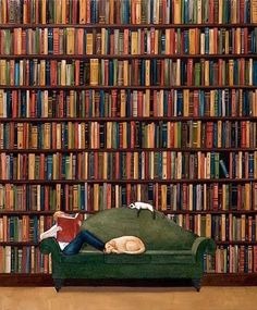 In library / En la Biblioteca need to add another cat and dog to this pic to make it perfect I Love Books, Books To Read, Reading Art, World Of Books, Lectures, Old Books, Book Nooks, Library Books, Dream Library