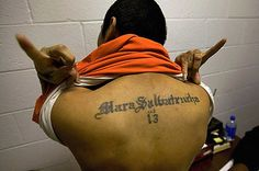 Gangs of El Salvador. A member of shows off his tattoos. is slang for Mara Salvatrucha, which translates loosely as street-tough Salvadorans. College Essay Examples, Dissertation Writing Services, Uk Visa, Wise Up, Political Articles, Comedy, Essay Questions, Der Arm, How To Apologize