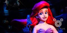Facebook Cover Photo - Magic Kingdom - New Fantasyland - Under the Sea Journey of the Little Mermaid