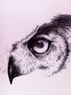 quiet observer by caughtinthehurricane on DeviantArt Pencil Sketches Of Animals, Art Drawings Sketches Simple, Cool Sketches, Pencil Art Drawings, Tattoo Drawings, Meaningful Drawings, Geometric Owl, Scribble Art, Bear Tattoos