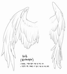 This is awesome! tips wings Drawing Techniques, Drawing Tips, Angel Wings Drawing, Poses References, Drawing Reference Poses, Hair Reference, Art Poses, Drawing Base, Art Drawings Sketches