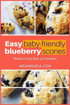 Looking for a easy and quick scones recipe that is also baby friendly and with no sugar? Then this blueberry scones recipe is the one you need: less than 30 minutes in total and with pantry ingredients you already have. A great idea for breakfast, lunch, dinner or snack and perfect for little ones too. Easy Snacks For Kids, Healthy Meals For Kids, Easy Healthy Recipes, Baby Food Recipes, Baby Meals, Kid Meals, Meals For One, Baby First Foods, Baby Finger Foods