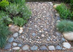 pebble pathway Now here's a crazy idea: what if I created a narrow pebbled path as a means of edging the garden bed...and carried it right up to the front porch and pebbled IT, too?