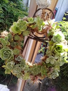 One of my succulent wreaths