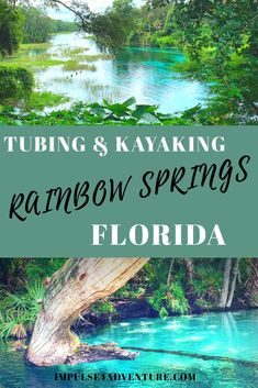 All you need to know before visiting Rainbow Springs for your kayaking or tubing adventure in Dunnellon, just 2 hours west of Orlando, Florida. Rainbow River Florida, Rainbow Springs State Park, Florida Springs, Florida Beaches, Visit Florida, Florida Vacation, Florida Travel Guide, Places To Travel, Places To Visit