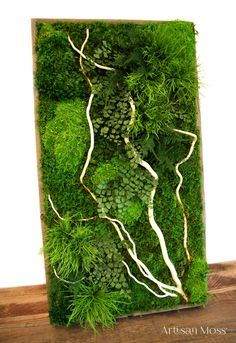 Natural white branches, mosses and ferns within a wood frame by Artisan Moss