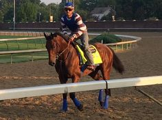 #TripleCrown winner American Pharoah returned to the track Friday for a post-@BelmontStakes jog under Jorge Alvarez.