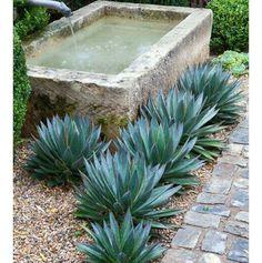 Outdoor Plunge Pool Inspiration   .  .  .  .  .  #plungepool #inspiration #homegoods #styledaily #yards #plunge #cooloff #yard #garden #currentmood #currentview #thesecret #concrete #tub #mercadocollective #nomadic #nomadiclifestyle #nomadicliving