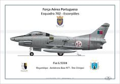 DIGITAL HANGAR: Fiat G.91/R4