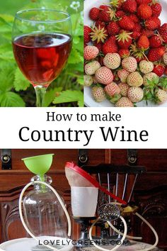 Wie man hausgemachten Landwein macht - Homemade wine on the farm - Wein Homemade Wine Recipes, Homemade Liquor, Homemade Alcohol, The Farm, Strawberry Wine, Wine Magazine, Homebrew Recipes, Partys, Fruit