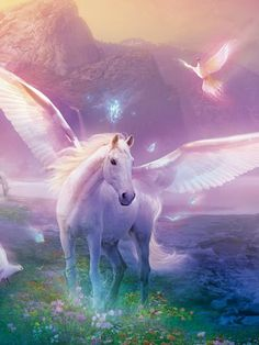 Hi I am Auroria, a Light Pegasus of the Shining Realm. I believe all pegasi ( our word for many pegasus ) should have the right for freedom and justice. Fantasy Unicorn, Unicorn And Fairies, Unicorn Art, Magical Creatures, Fantasy Creatures, Pegasus, Fantasy World, Fantasy Art, Fantasy Love