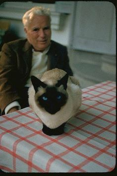 Charlie Chaplin with cat at Glazier