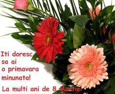 Imagini pentru urari de 8 martie 8 Martie, Birthday, Plants, Garden, Image, March, Birthdays, Garten, Planters