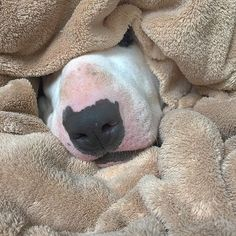 Sleep tight x                                                                                                                                                     More