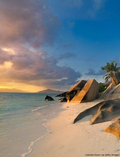 We've found heaven on earth: La Digue Island in the Seychelles