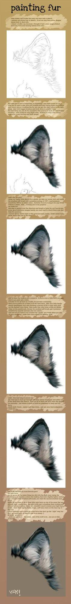 Painting Fur by novawuff [dA] join us http://pinterest.com/koztar/cg-anatomy-tutorials-for-artists/
