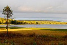 Kangosjärvi Muoniossa. - Lake Kangosjärvi in Muonio, Finland.