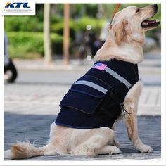 >> Click to Buy << Sportswear Pet Sport Clothing Products For The Huge Dog Jacket Waterproof Golden Retriever Big Dog Clothes For Big Dog #Affiliate
